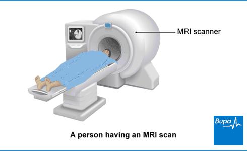 Sex in an mri scanner